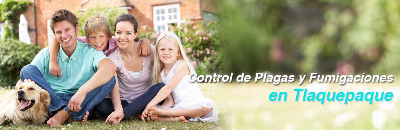 banner control de plagas y fumigaciones en tlaquepaque